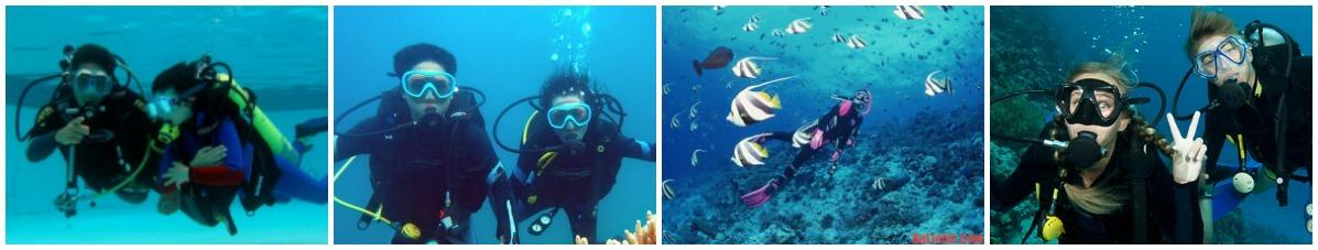 phụ kiện lặn và ống thở cao cấp