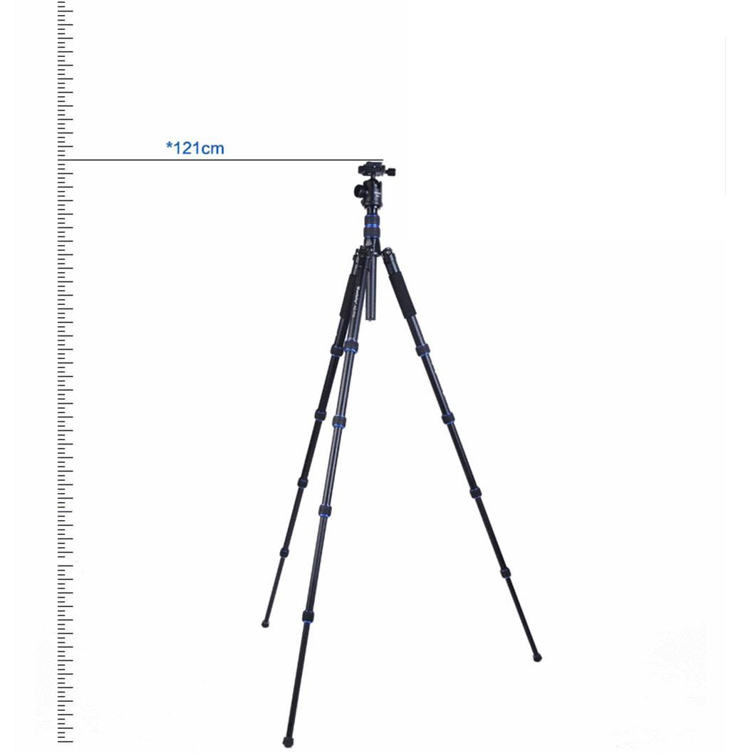 AZ-310-6.jpg