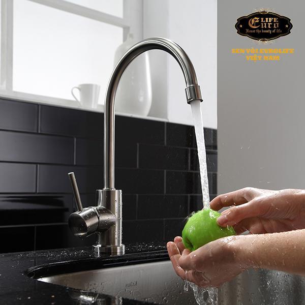 Vòi rửa chén lạnh Inox SUS 304 Eurolife EL-T017-44.jpg