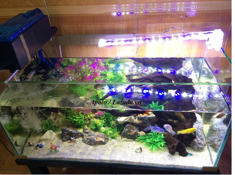 1 đèn bể cá 232.png