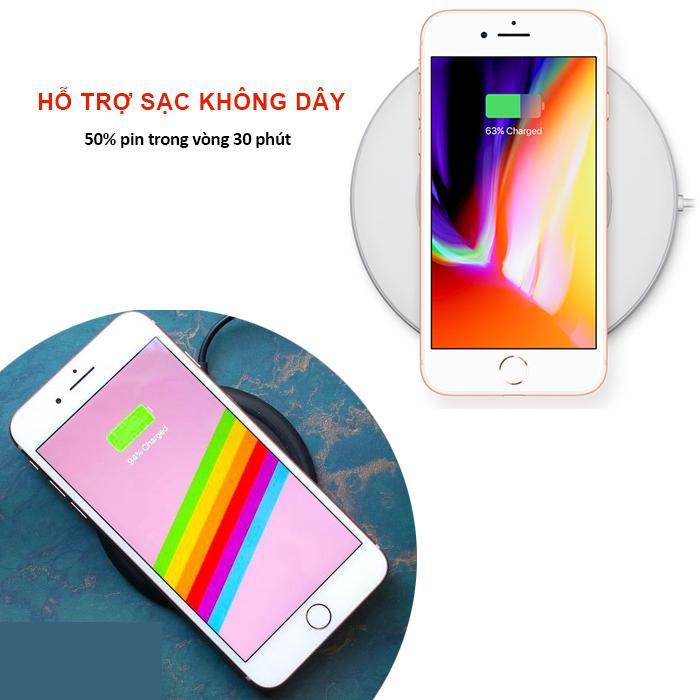 apple_iP8_7.jpg