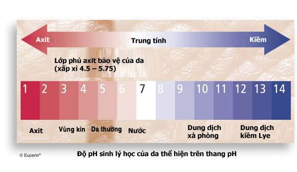 thang-pH-sinh-ly-hoc-cua-da.jpg