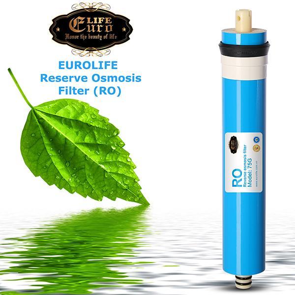Lõi lọc RO cho máy lọc nước RO Eurolife.jpg