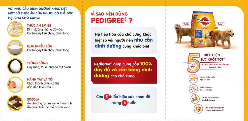 Pedigree Sampling Leaflet_Piano Fold (VN)-2.jpg