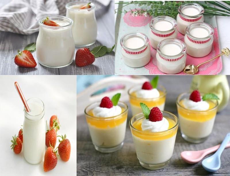 làm yaourt từ sữa tươi