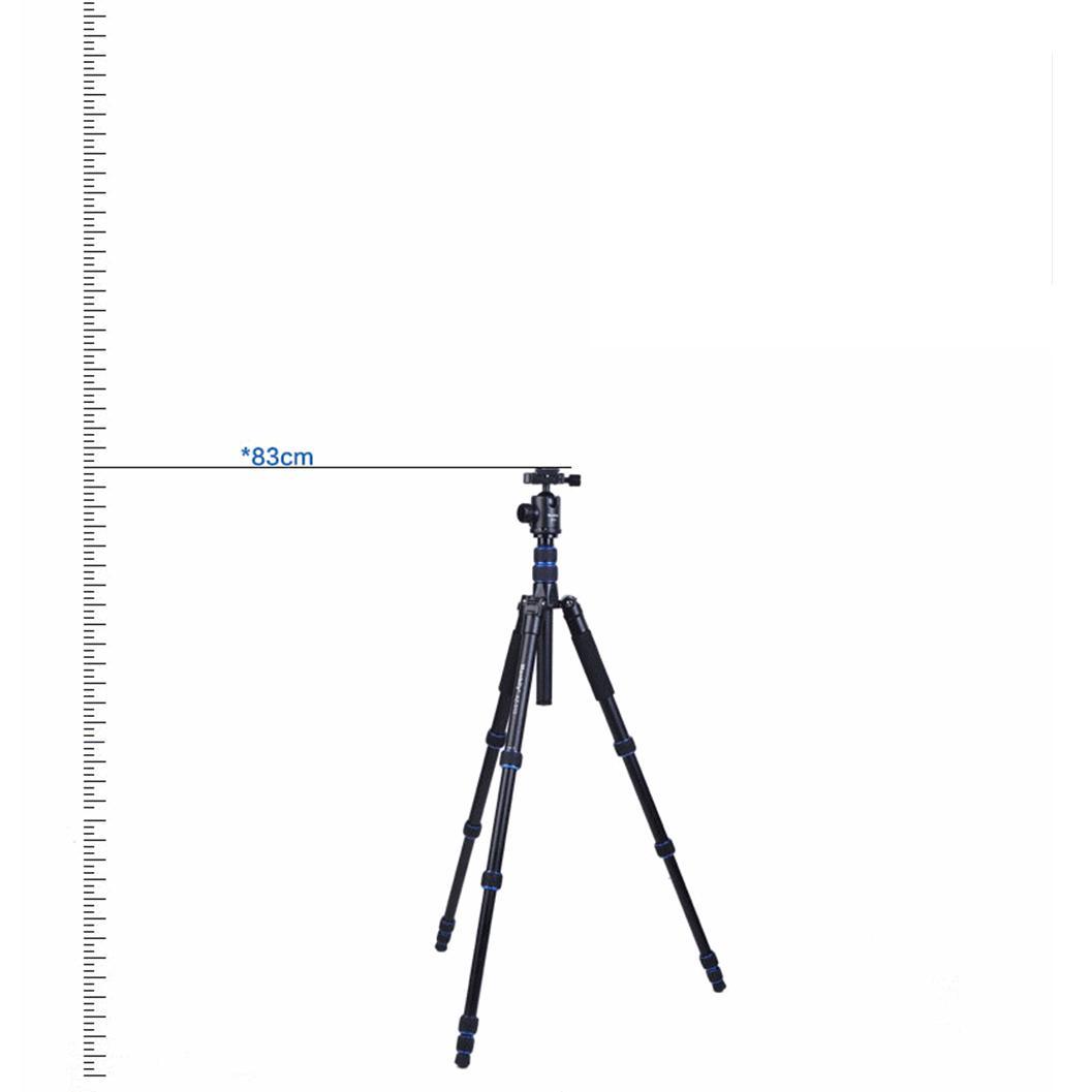 AZ-310-4.jpg