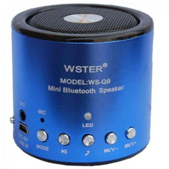 Loa Bluetooth mini Wster WS-Q9 (Xanh)