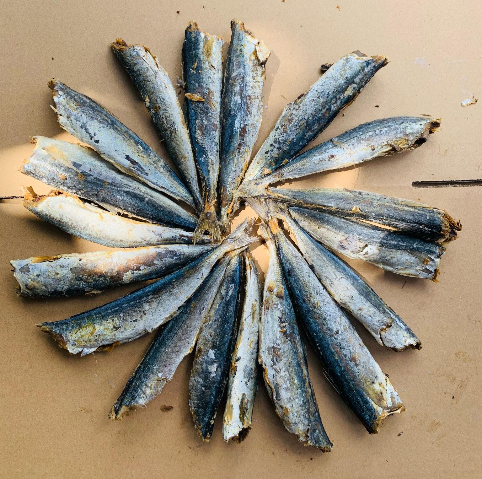 Cá nục kho tỏi ớt, Cách kho cá nục kho cà,  Khô cá nục (1kg) loại ngon, bổ dưỡng, cá béo, thơm, hàng chất lượng, để được lâu, phân phối bởi MikiFoods