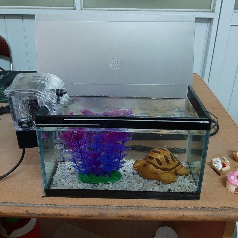 Bể cá mini 24 cm với 5 món (bể sỏi nền cây nhựa đế tròn máy lọc nước phụ kiện bể cá nhỏ)
