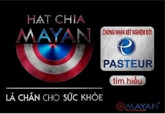 hat-chia-mayan-duoc-kiem-nghiem-pasteur-quysuckhoe