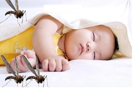 Combo 2 chai tinh dầu tràm nguyên chất tắm chống bệnh vặn cho trẻ nhỏ Ngọc Tuyết 100mlx50ml 7