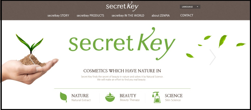 Image result for secret key logo