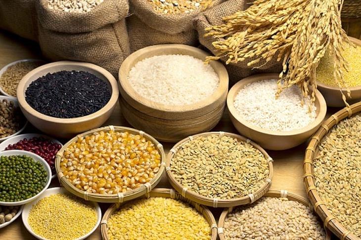 Ngũ cốc và bột ngũ cốc các loại là thực phẩm giàu protein