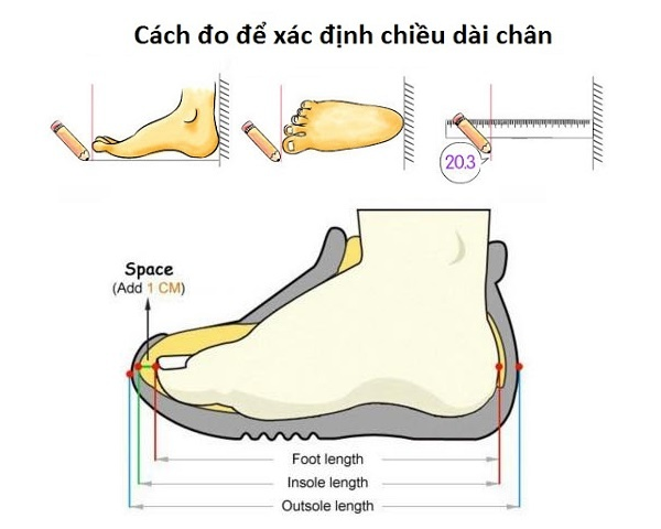 [shopphukienrio.com]-cach-do-size-giay