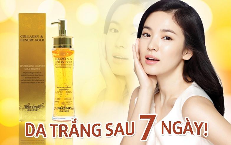banner collagen (1)