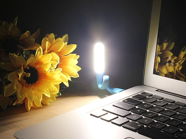 USB Portable Light (LXS-001)