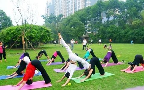 Thảm tập yoga MAT cao cấp