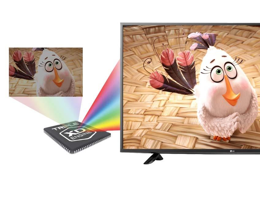 Tivi LG 49LF510T 49 inch -Trải nghiệm hình ảnh ấn tượng cùng những thước phim sống động, cực chất với công nghệ Triple XD Engine