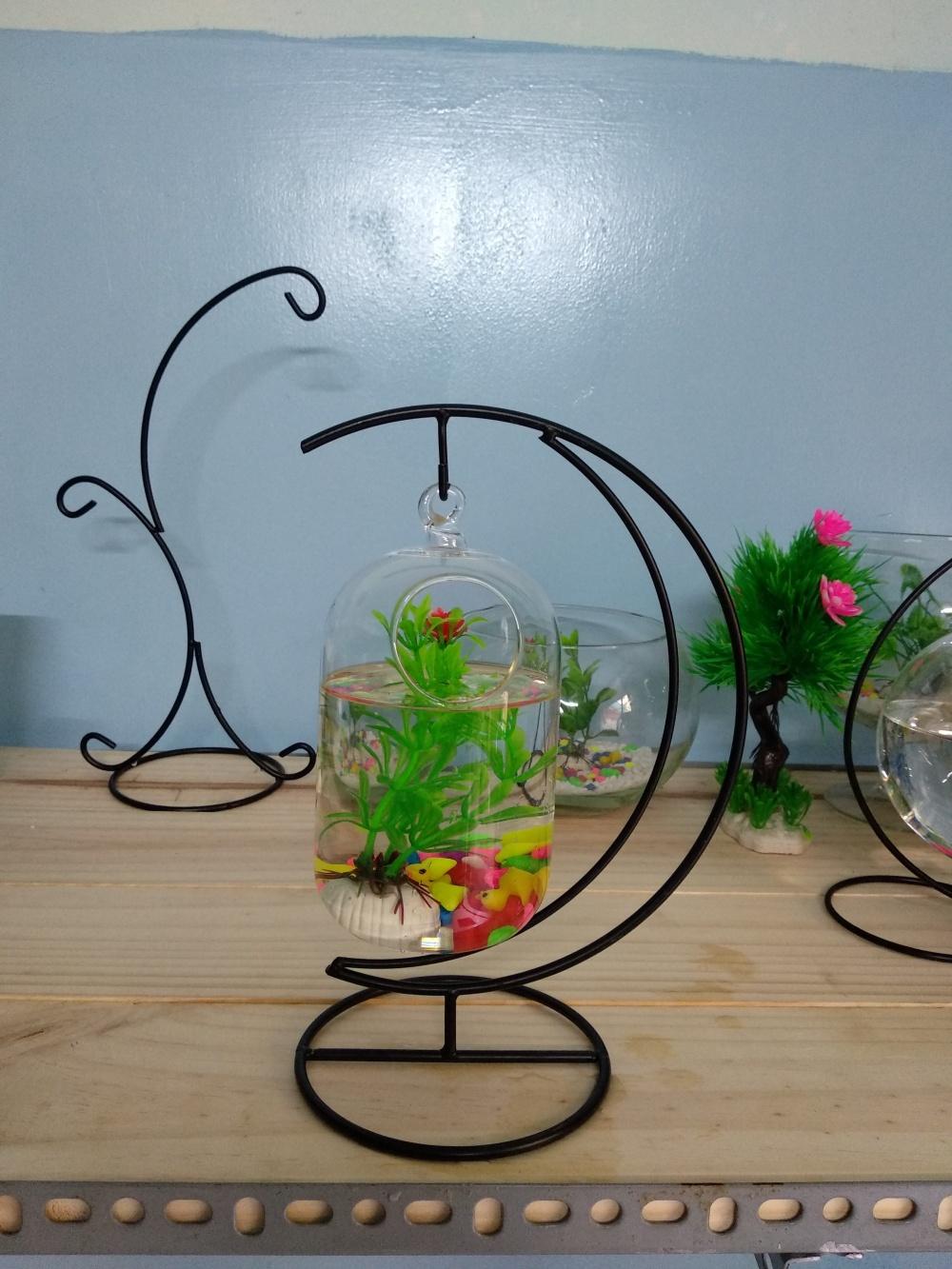 bể cá mini cung trăng