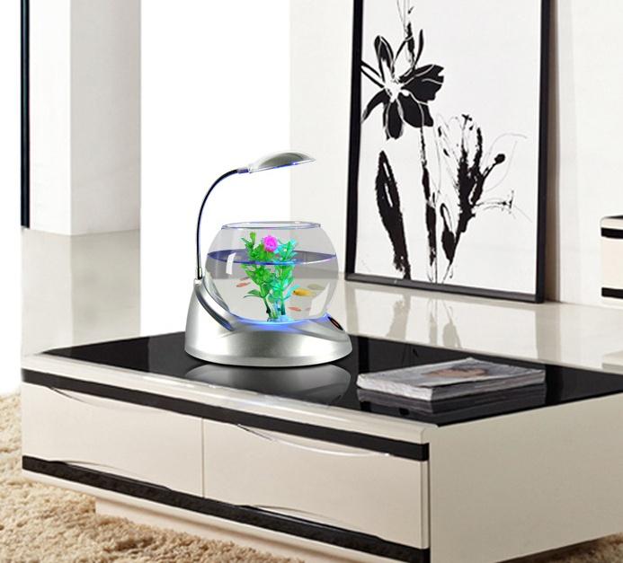 bể cá mini tròn có đèn