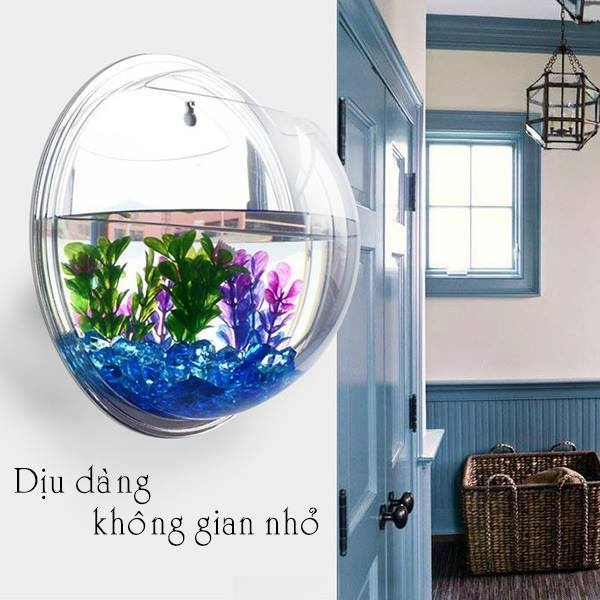 bể cá mini treo tường